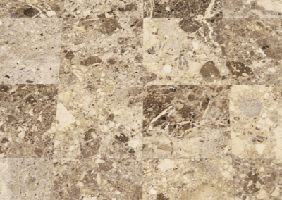 Conglomerate Polished 12″x12″