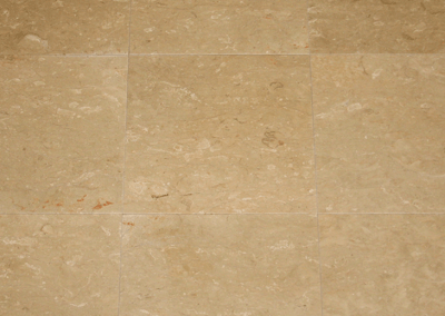 Leo Beige Polished 16″x16″